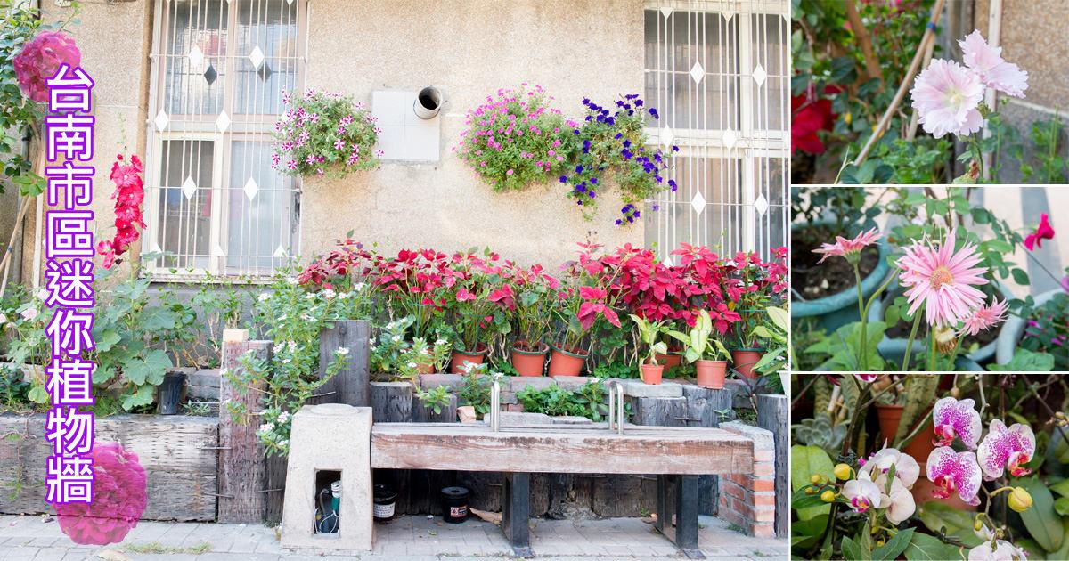 【台南景點】近鶯料理.天壇 拍照好好拍~台南市區迷你植物牆