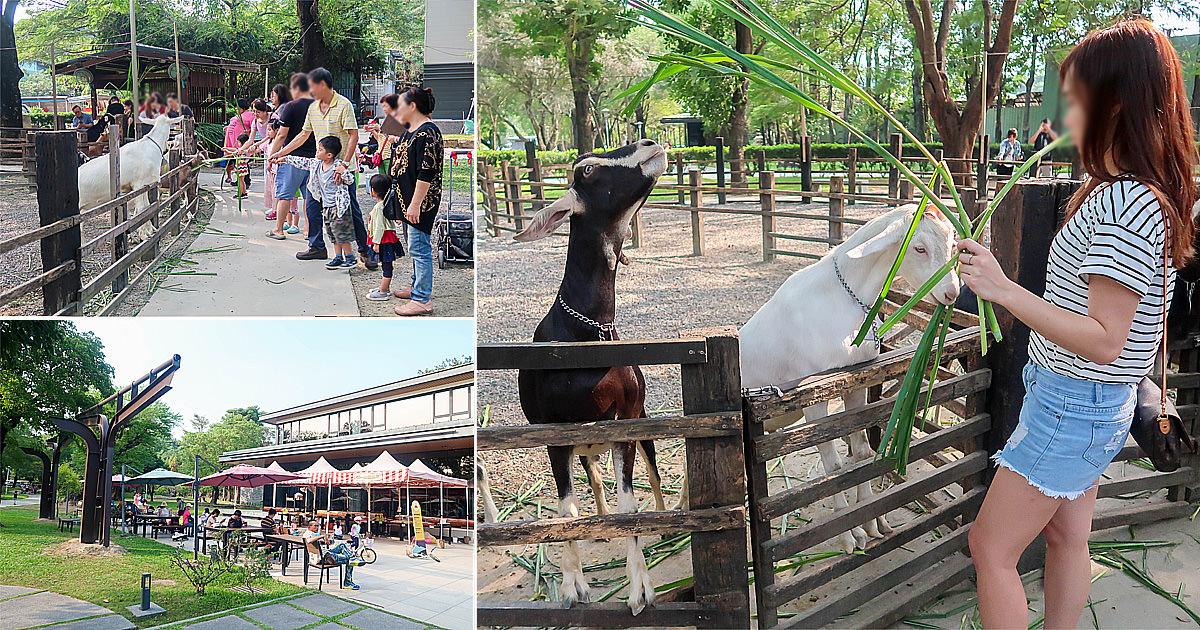 【高雄景點】餵小羊吃牧草|現場喝現擠羊奶|門票換牧草及冰棒.奶酪|高雄親子景點~華一休閒農場