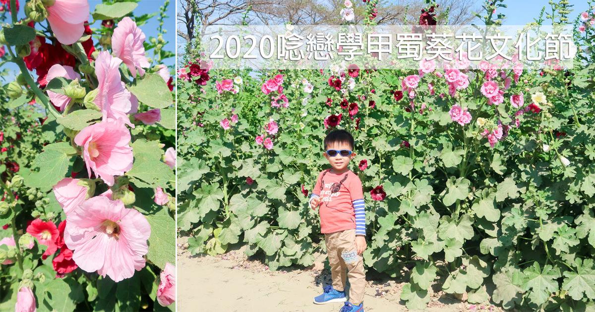 【台南學甲】台南最美的蜀葵花海|走在一丈紅迷宮|乾燥花束DIY體驗|打卡送花季限定吸水杯墊~~2020唸戀學甲蜀葵花文化節