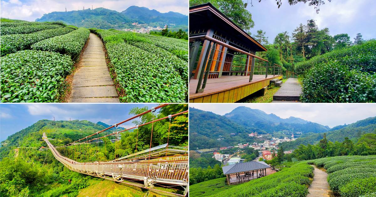 【嘉義景點】全台海拔最高吊橋|漫步海拔1000公尺雲海吊橋|走在茶園像在拍茶飲廣告|吊橋|茶園|老街~~太平雲梯