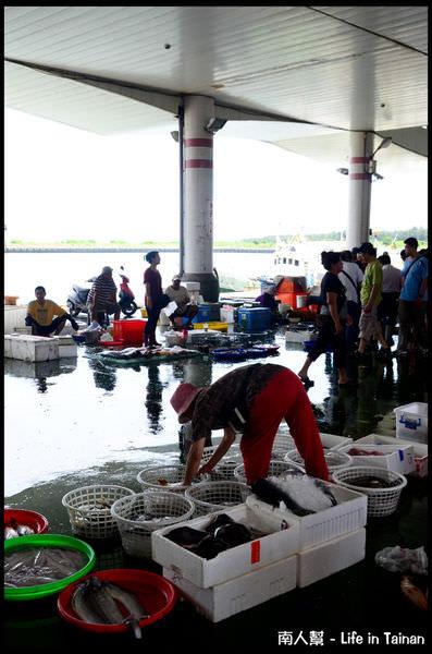 將軍漁港魚貨拍賣場-03