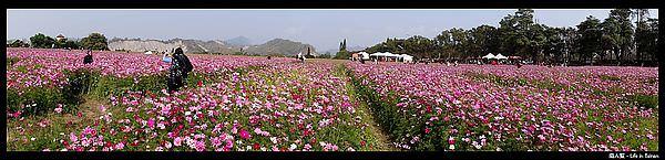 走馬瀨農場-21