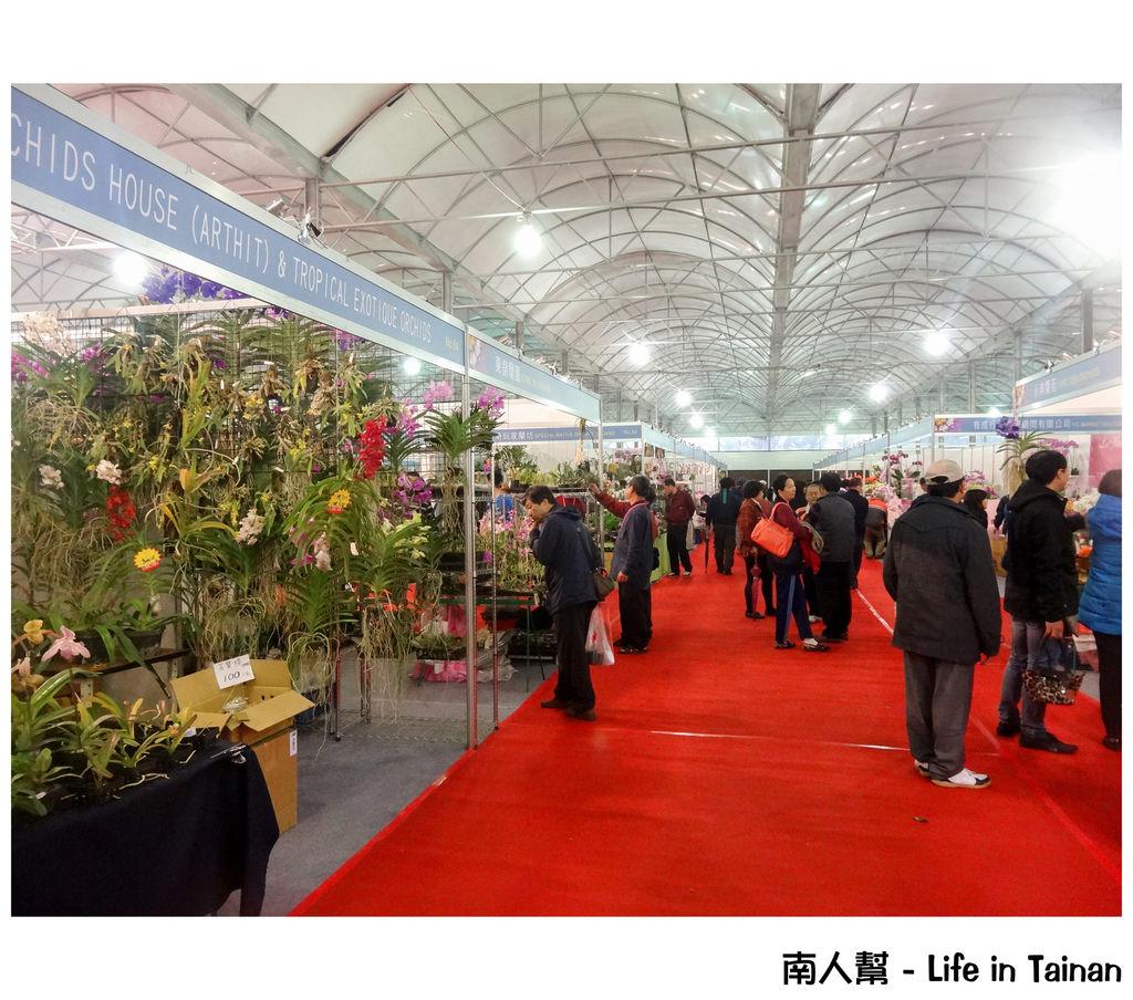 2015臺灣國際蘭展,台南蘭花展,台南蘭花生物科技園區