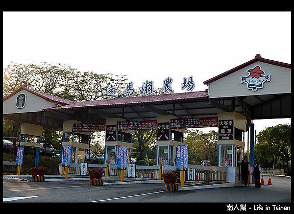 【台南市大內區-景點.活動】走馬瀨農場.2013冬季熱氣球嘉年華活動