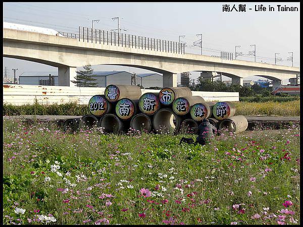 【台南市新市區-花海】2012新市花海節(活動)