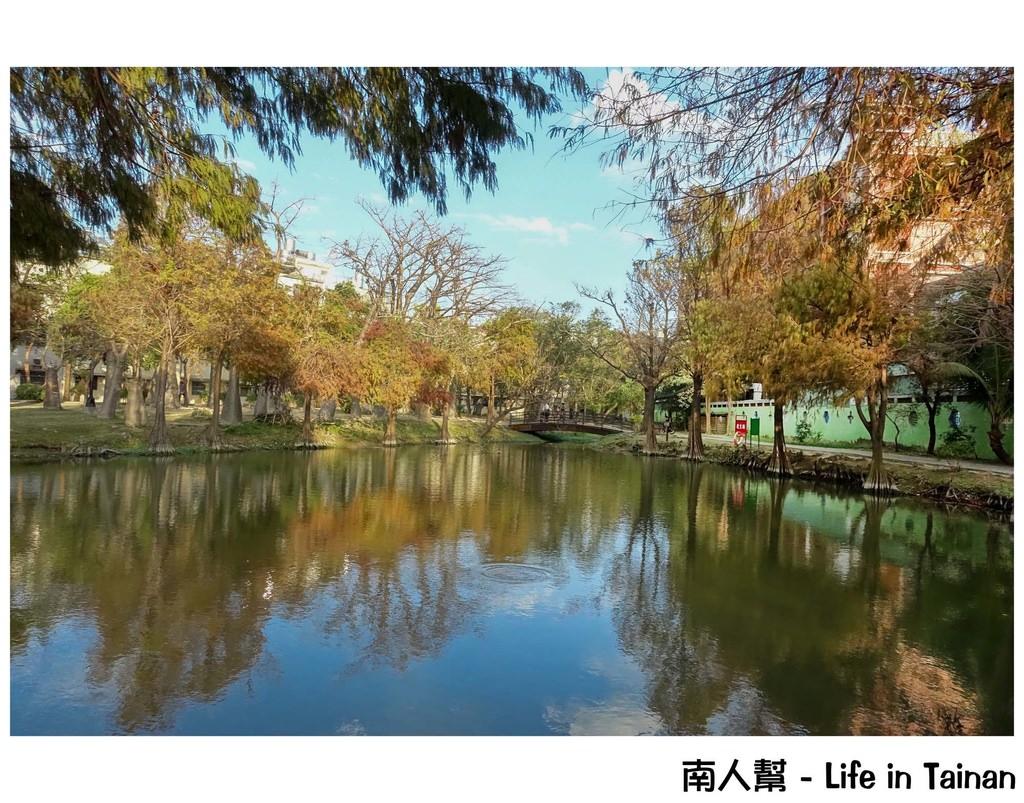 【台南市東區-公園】不同季節有著不同風情的│熱鬧城市中的小秘境~巴克禮紀念公園