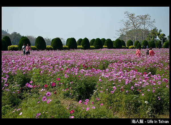 走馬瀨農場-06