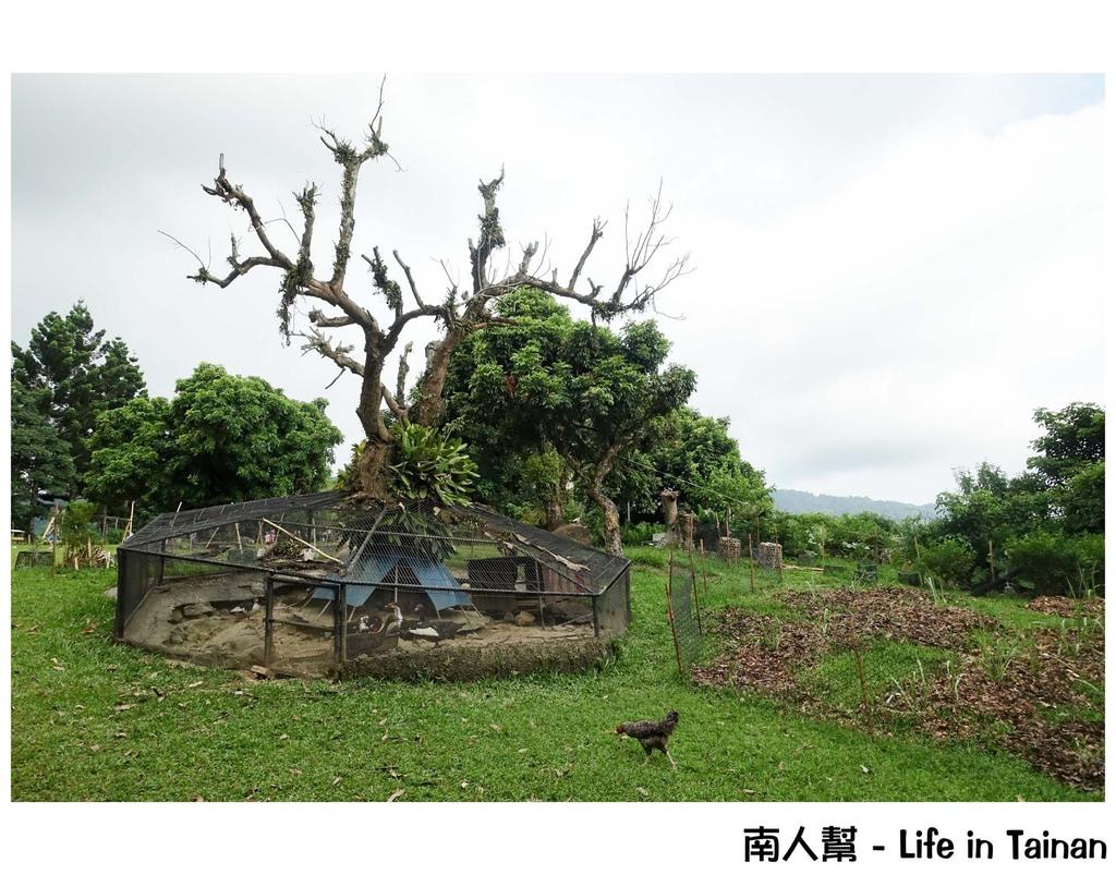 仙湖休閒農場