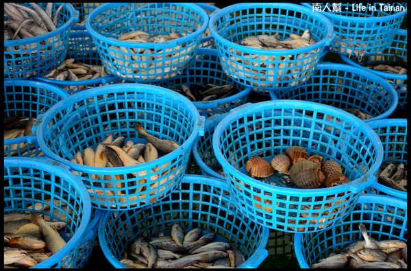 將軍漁港魚貨拍賣場-02