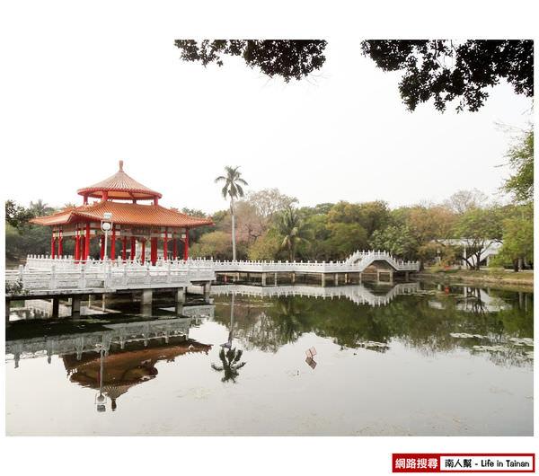 【台南中西區-風景】台南公園之苦楝樹、羊蹄甲
