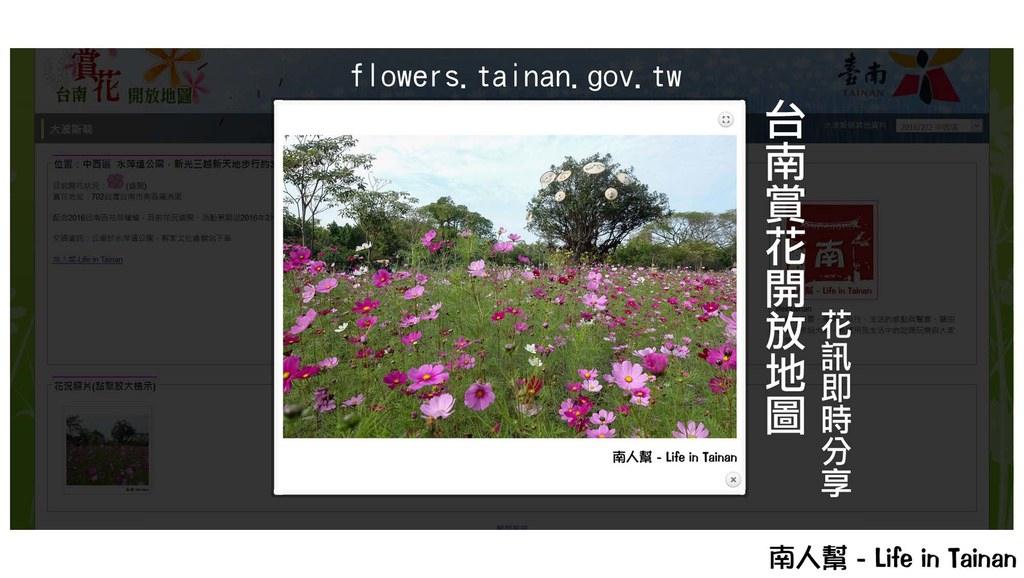 【台南賞花】人人都是攝影師,人人都是分享者~~台南開放賞花地圖